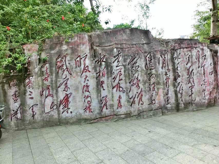 深圳南岭求水山公园图片