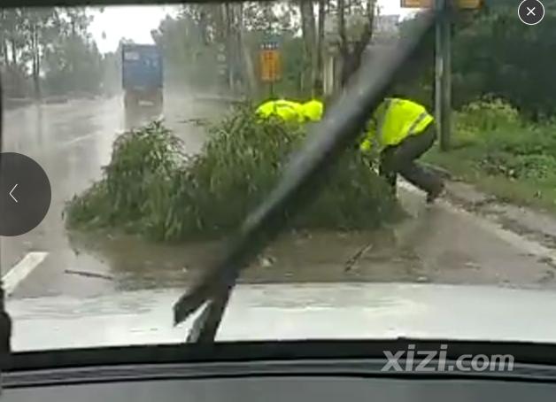 紧急通知 超强台风 海马 来袭,惠东停工 公交停运