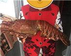 超大鲶鱼中午就把它吃了,你家乡管它叫什么