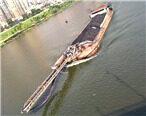 我的天!西枝江市区河段出现了这个庞然大物