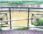 马过渡河护栏有多处损坏,存在安全隐患!