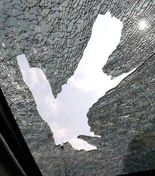 一大早开车出门遇到这种事情,几乎吓尿了!