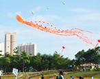 风筝节,一片纸鸢飞出蓝天上的自由与快乐