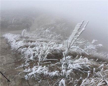 连惠州都冷出雾凇了!今晨最低温仅3度