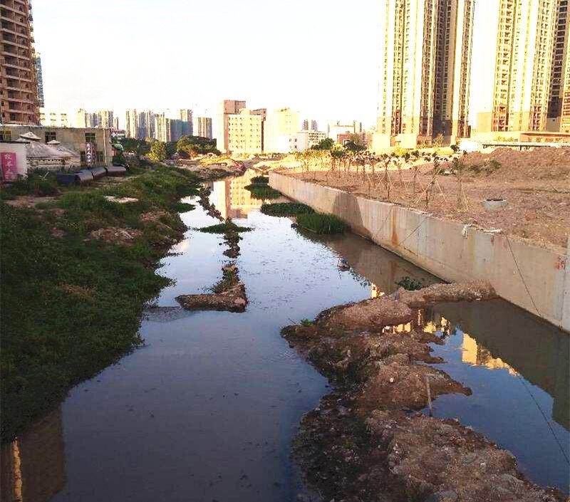 大亚湾妈庙河、绿道的建设现场图来啦,期待