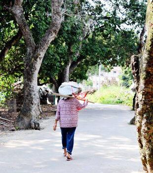 藏在惠东大岭的这条村, 有不少的故事啊!