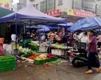 惠东焦田市场附近这条路,摆摊摆到路中间了