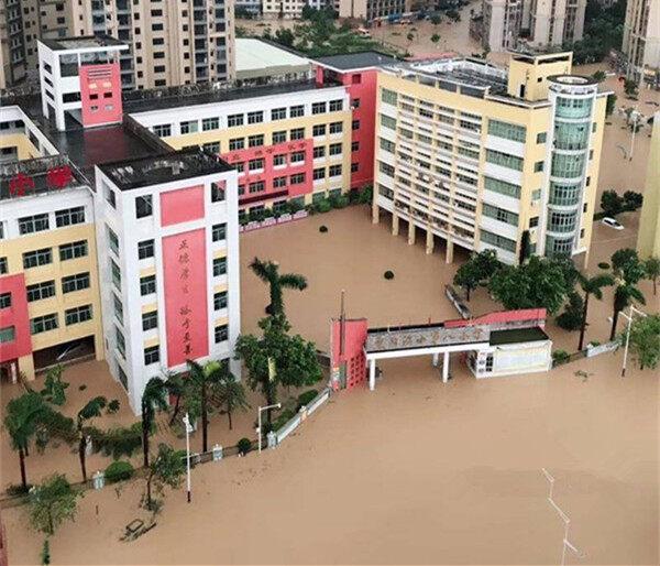 台风肆虐过后,大树被连根拔起!淡水多处水浸街,他们在行动