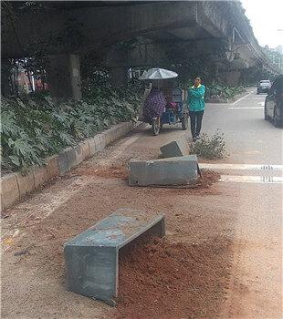 太危险了吧!惠博大道天桥绿化带花盆掉下