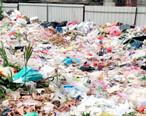 垃圾堆在幼儿园食堂旁,学生能好好吃饭?
