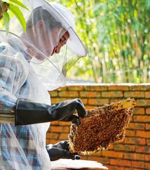 近距離看養蜂人,才發現他們生活是很簡單的