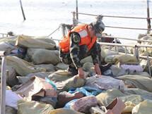 连搜4次!惠州海警查获137吨走私冻品