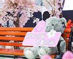 """港惠负一楼出现了一个""""小熊花园"""",超萌"""