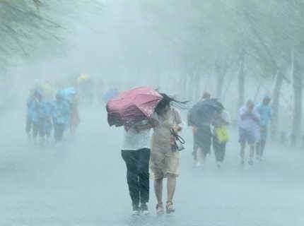 惠城区暴雨预警,惠东县雷雨大风预警生效