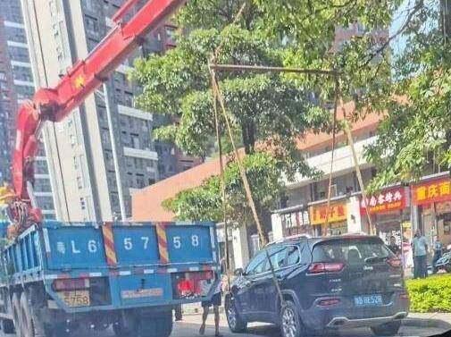 惠州交警在街上清理违停车辆,用卡车拖走