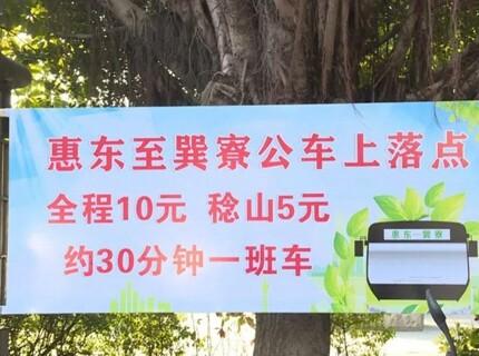 全程10元,县城至巽寮湾公交线路开通了